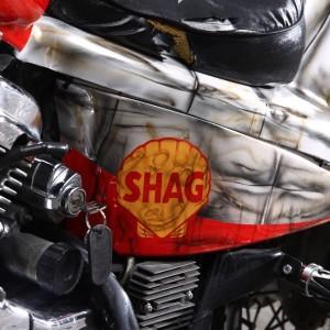 bike_shag17.jpg